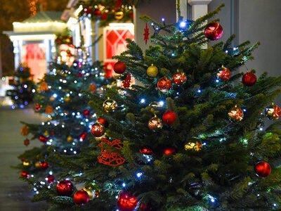 Een verlichte kerstboom hoort bij de kerstvakantie